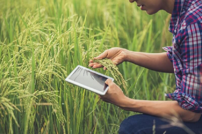 گرایش آب - مهندسی کشاورزی