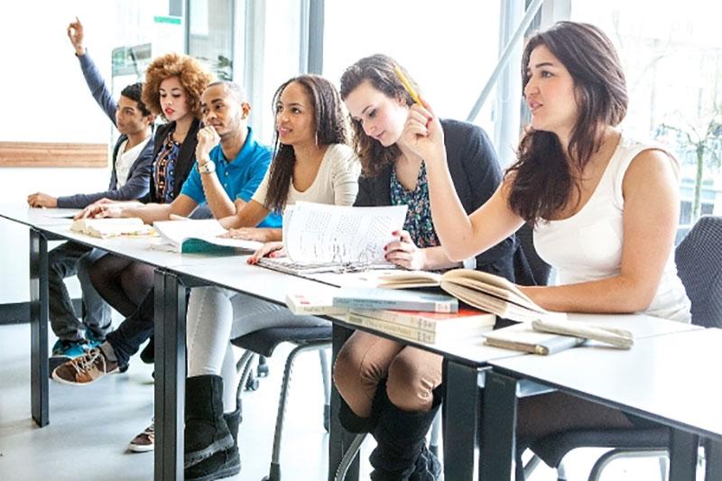 Business-management-study-orientations